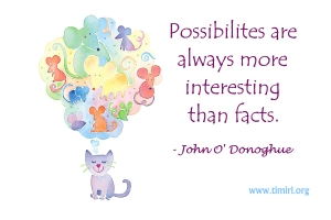possibilities_001